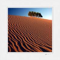 Mesquite Dunes © Gary Hayes 2005